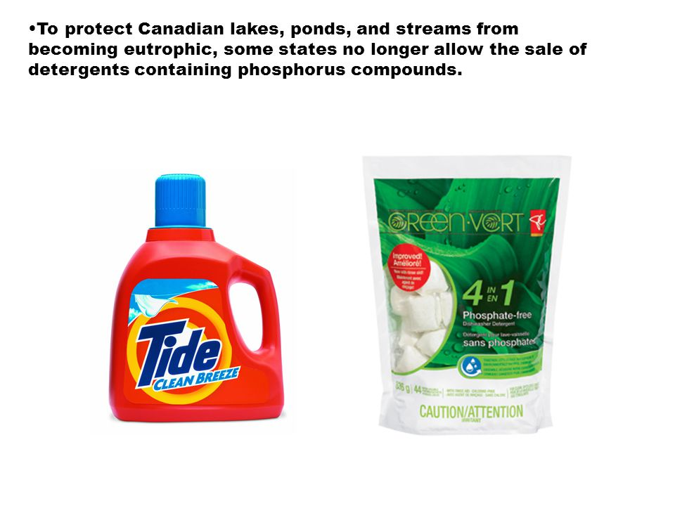To protect Canadian lakes, ponds, and streams from becoming eutrophic, some states no longer allow the sale of detergents containing phosphorus compou
