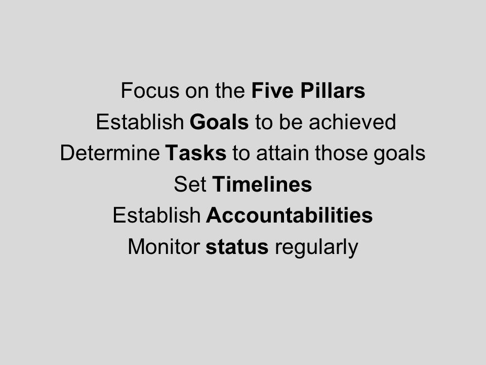 Focus on the Five Pillars Establish Goals to be achieved Determine Tasks to attain those goals Set Timelines Establish Accountabilities Monitor status