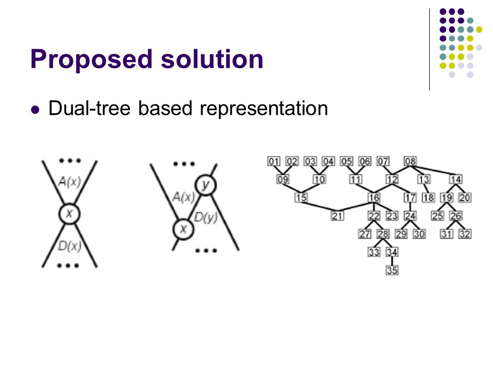 Proposed solution Dual-tree based representation