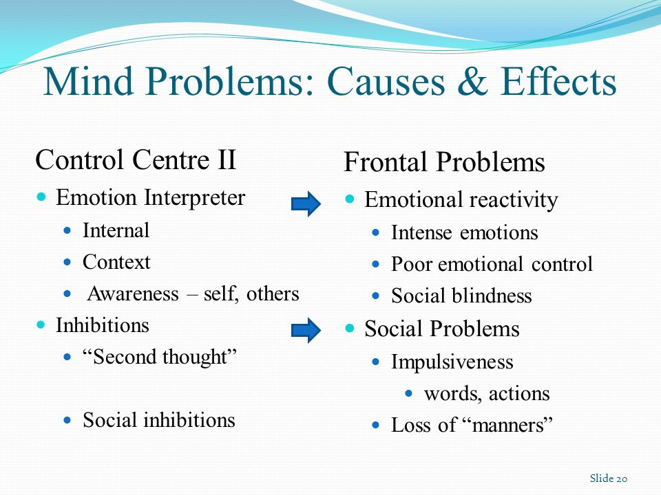 Mind Problems: Causes & Effects Control Centre II Emotion Interpreter Internal Context Awareness – self, others Inhibitions Second thought Social inhibitions Frontal Problems Emotional reactivity Intense emotions Poor emotional control Social blindness Social Problems Impulsiveness words, actions Loss of manners Slide 20
