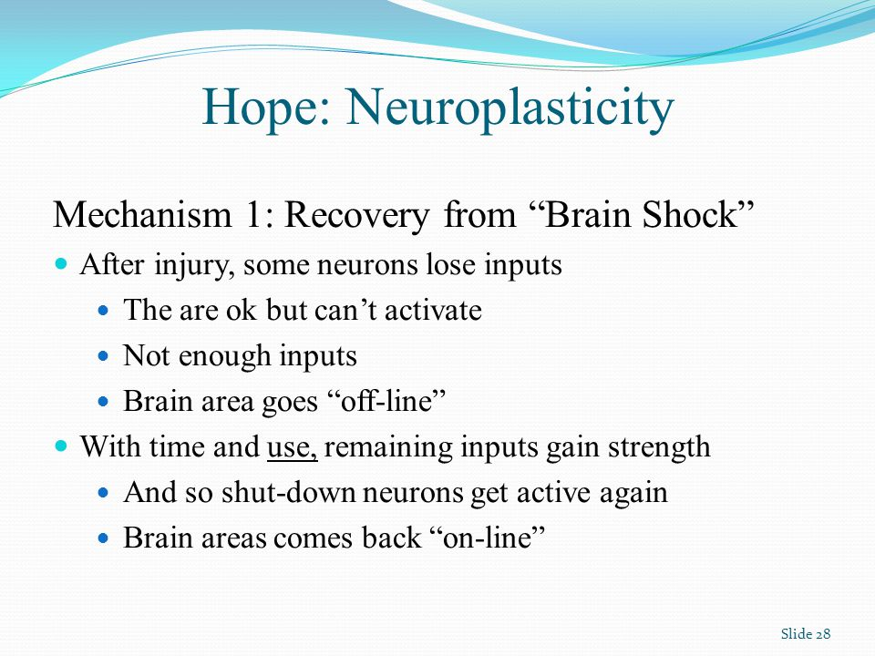Hope: Neuroplasticity Mechanism 1: Recovery from Brain Shock After injury, some neurons lose inputs The are ok but can't activate Not enough inputs Brain area goes off-line With time and use, remaining inputs gain strength And so shut-down neurons get active again Brain areas comes back on-line Slide 28
