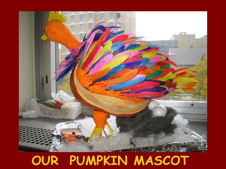OUR PUMPKIN MASCOT