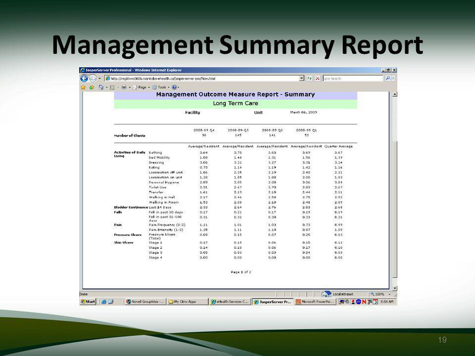 19 Management Summary Report