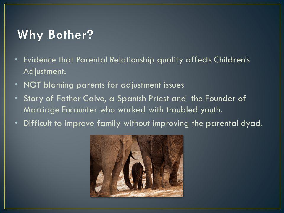 Evidence that Parental Relationship quality affects Children's Adjustment.