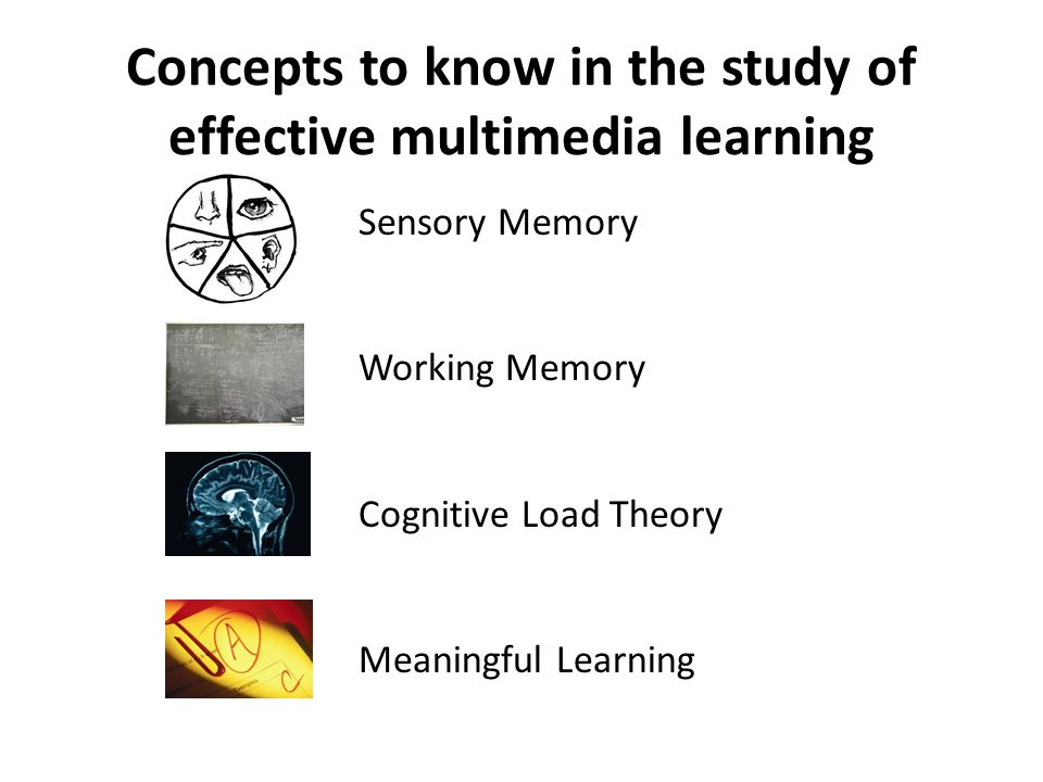 Concepts to know in the study of effective multimedia learning Sensory Memory Working Memory Cognitive Load Theory Meaningful Learning