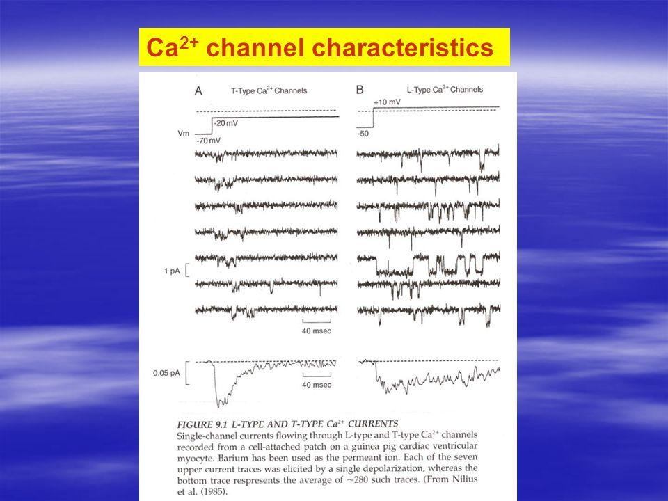 Ca 2+ channel characteristics