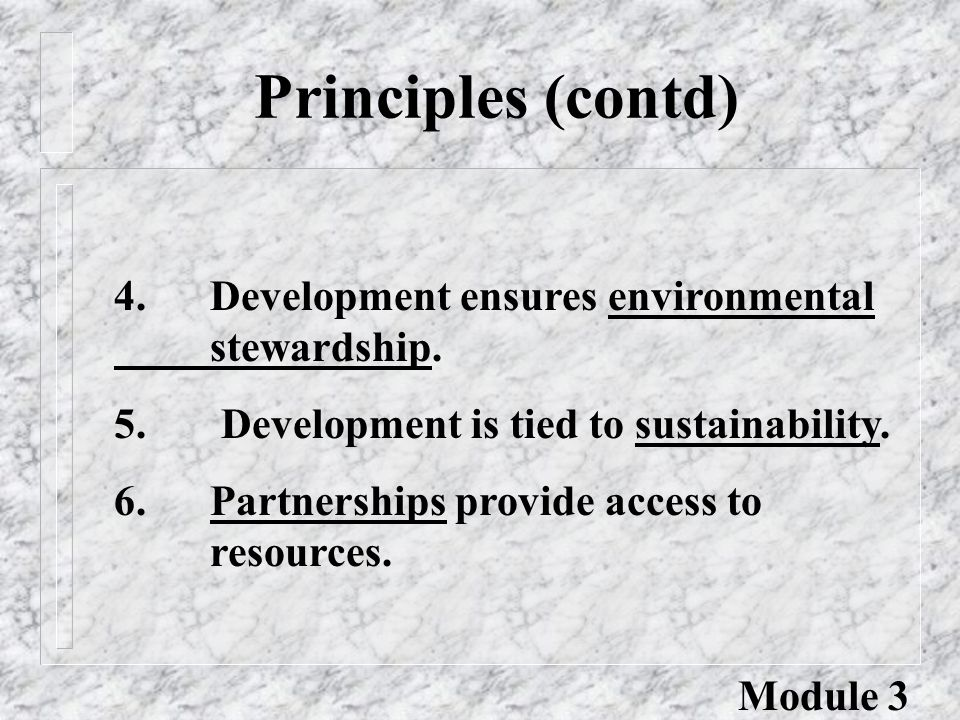 Principles (contd) 4.Development ensures environmental stewardship.