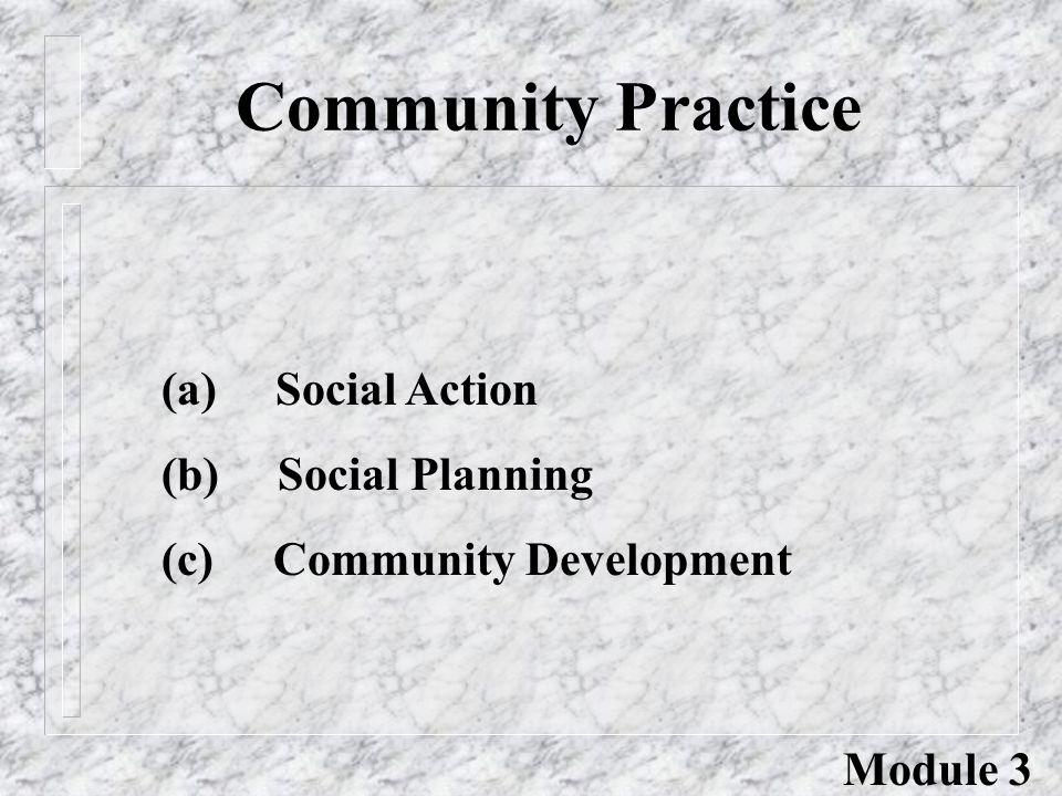 Community Practice (a) Social Action (b) Social Planning (c) Community Development Module 3