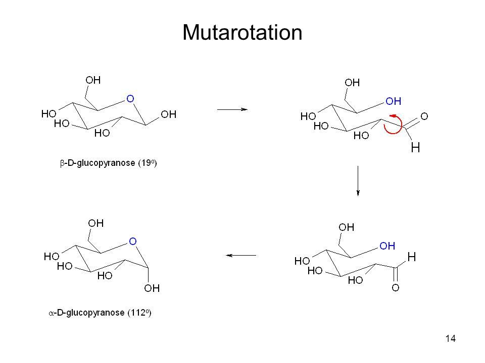 14 Mutarotation