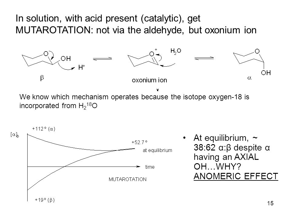 15 In solution, with acid present (catalytic), get MUTAROTATION: not via the aldehyde, but oxonium ion At equilibrium, ~ 38:62 α:β despite α having an