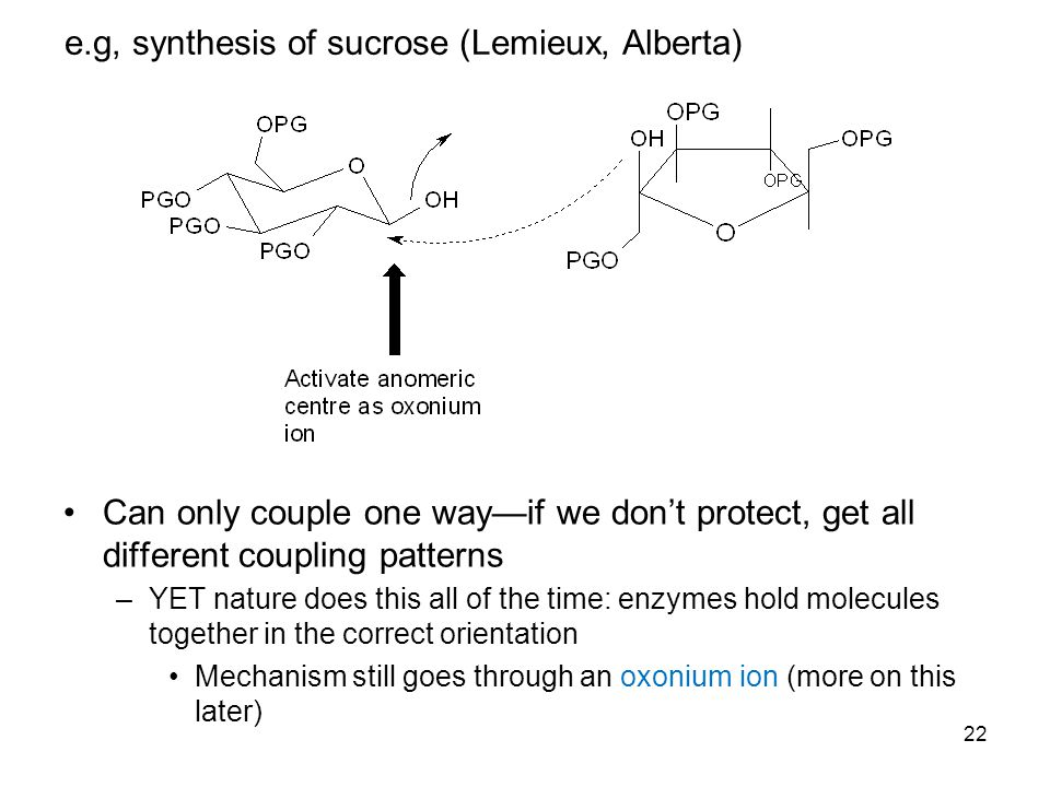 22 e.g, synthesis of sucrose (Lemieux, Alberta) Can only couple one way—if we don't protect, get all different coupling patterns –YET nature does this