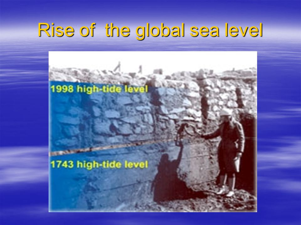Rise of the global sea level