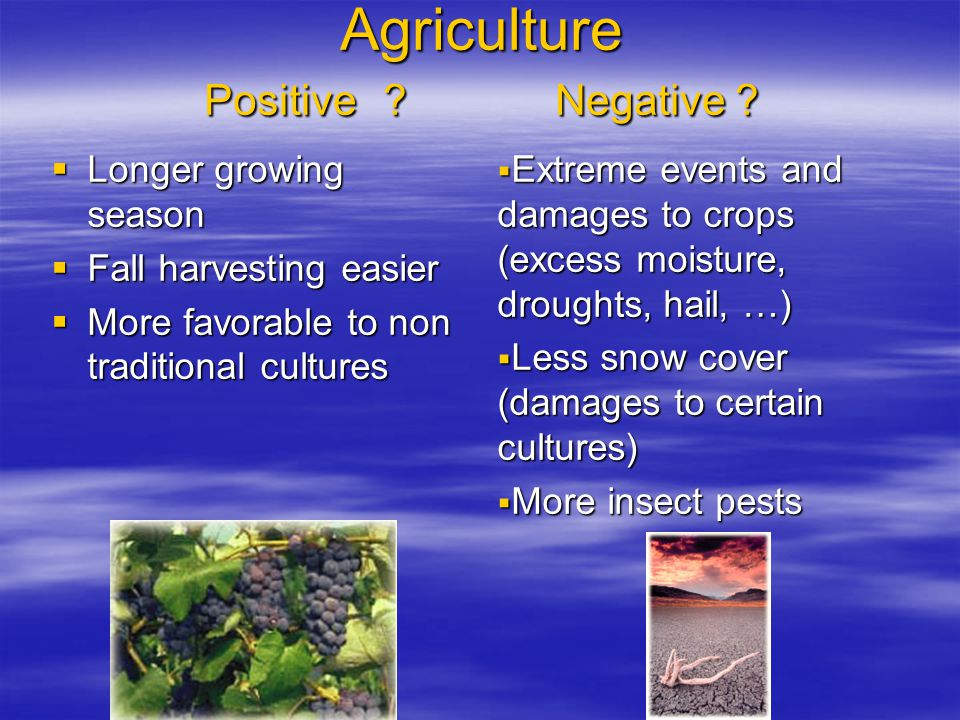 Agriculture Positive ? Negative ?  Longer growing season  Fall harvesting easier  More favorable to non traditional cultures  Extreme events and d