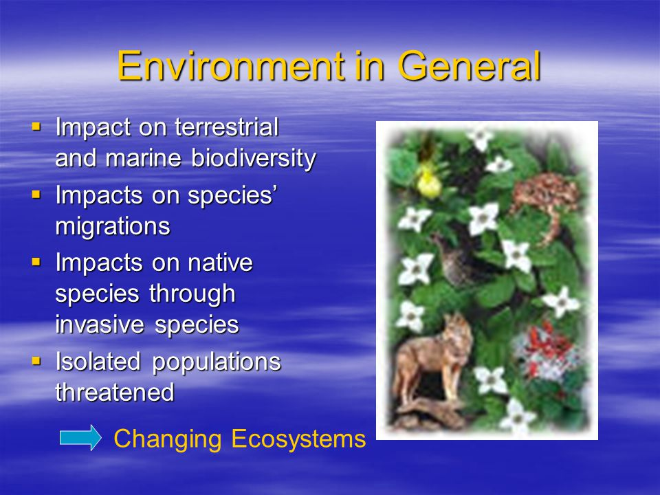 Environment in General  Impact on terrestrial and marine biodiversity  Impacts on species' migrations  Impacts on native species through invasive species  Isolated populations threatened Changing Ecosystems