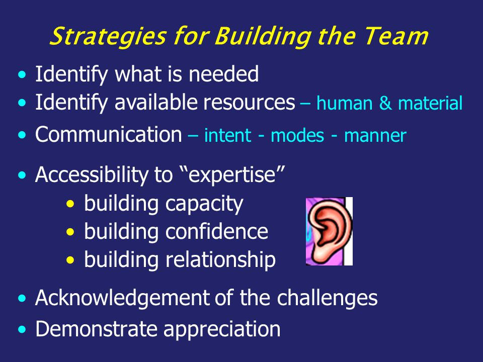 Strategies for Building the Team Acknowledgement of the challenges Demonstrate appreciation Identify what is needed Communication – intent - modes - manner Accessibility to expertise building capacity building confidence building relationship Identify available resources – human & material