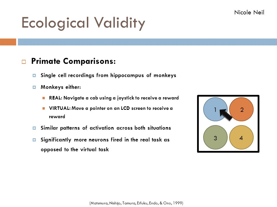 Ecological Validity  Primate Comparisons:  Single cell recordings from hippocampus of monkeys  Monkeys either: REAL: Navigate a cab using a joystic