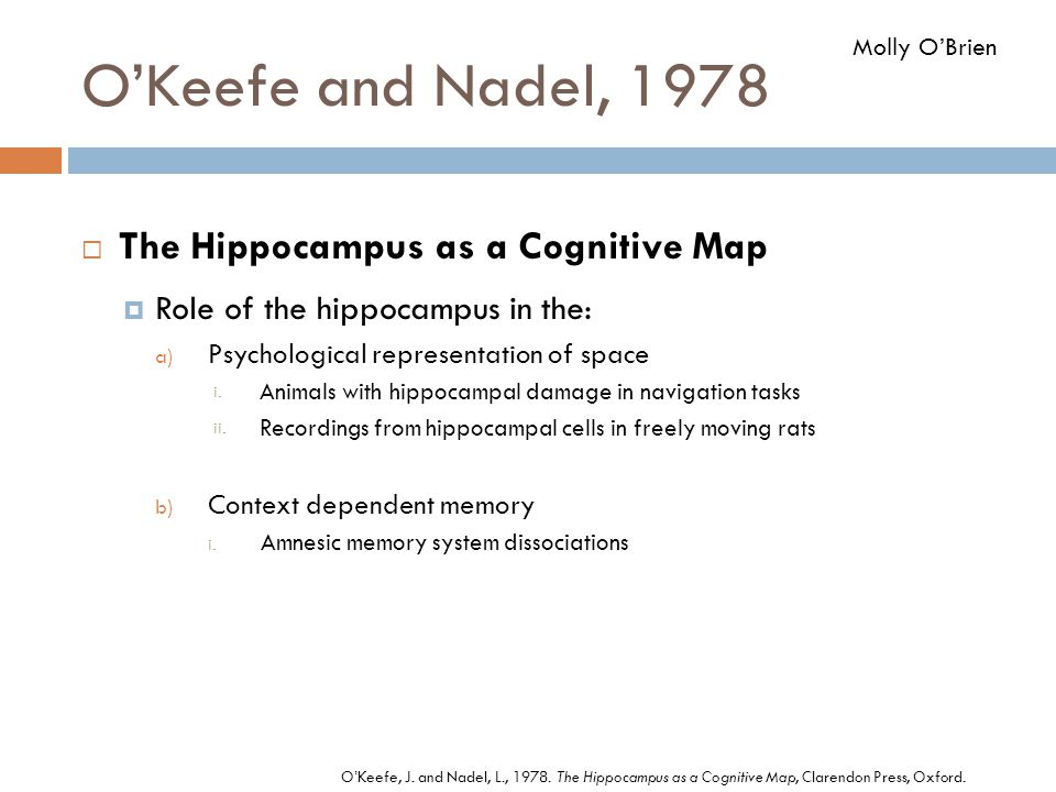 O'Keefe and Nadel, 1978  The Hippocampus as a Cognitive Map  Role of the hippocampus in the: a) Psychological representation of space i. Animals wit