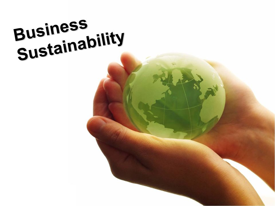 BusinessSustainability