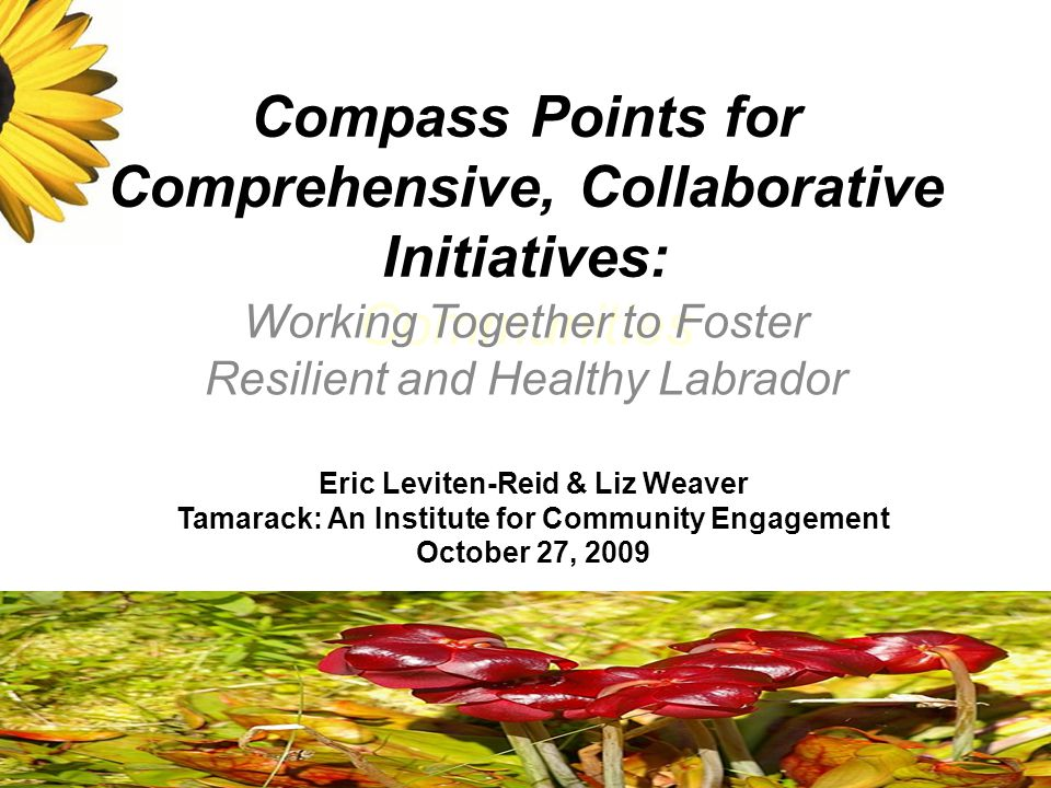 Compass Points for Comprehensive, Collaborative Initiatives: Communities Working Together to Foster Resilient and Healthy Labrador Eric Leviten-Reid & Liz Weaver Tamarack: An Institute for Community Engagement October 27, 2009