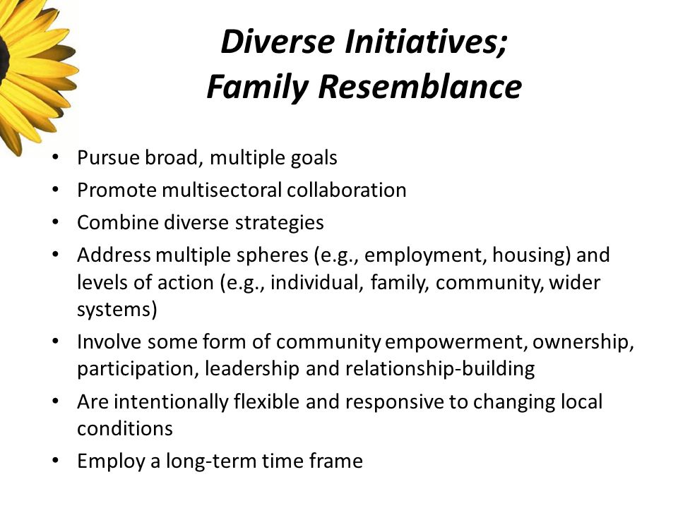 Diverse Initiatives; Family Resemblance Pursue broad, multiple goals Promote multisectoral collaboration Combine diverse strategies Address multiple spheres (e.g., employment, housing) and levels of action (e.g., individual, family, community, wider systems) Involve some form of community empowerment, ownership, participation, leadership and relationship-building Are intentionally flexible and responsive to changing local conditions Employ a long-term time frame