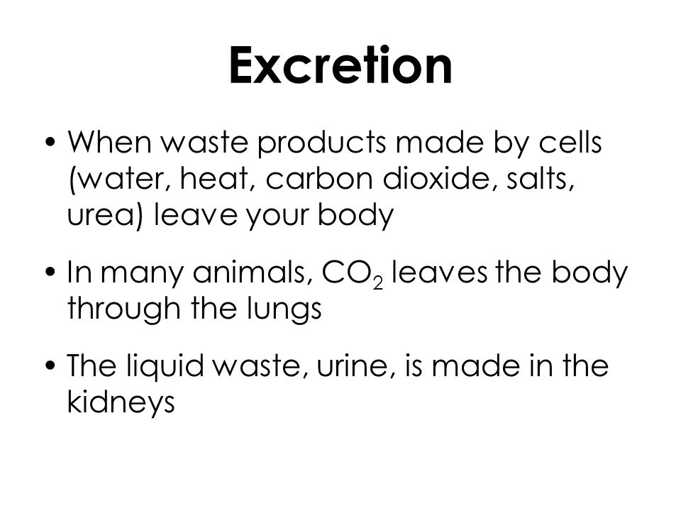 Urine: made up of water, heat, harmful chemicals (urea), and some salts Perspiration: when heat, water, and salt are excreted by the body through skin (i.e.
