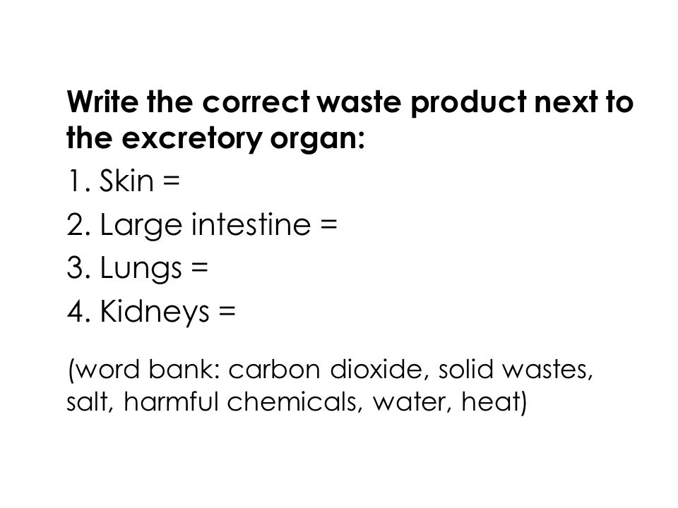 The waste products are: Skin = water, heat, salt Large Intestine = solid waste Lungs = carbon dioxide Kidneys = harmful chemicals, heat, salt