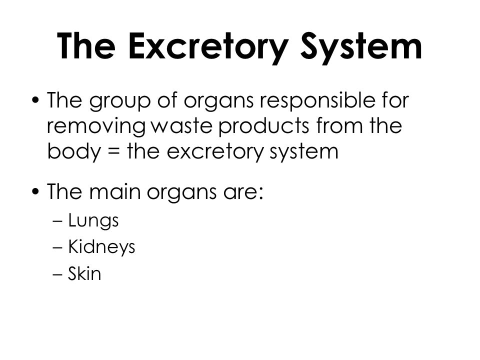 The Excretory System The group of organs responsible for removing waste products from the body = the excretory system The main organs are: –Lungs –Kid