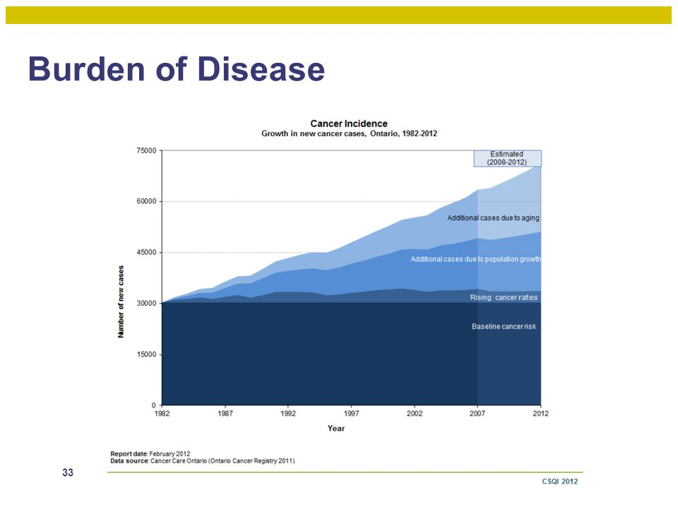 Burden of Disease 33