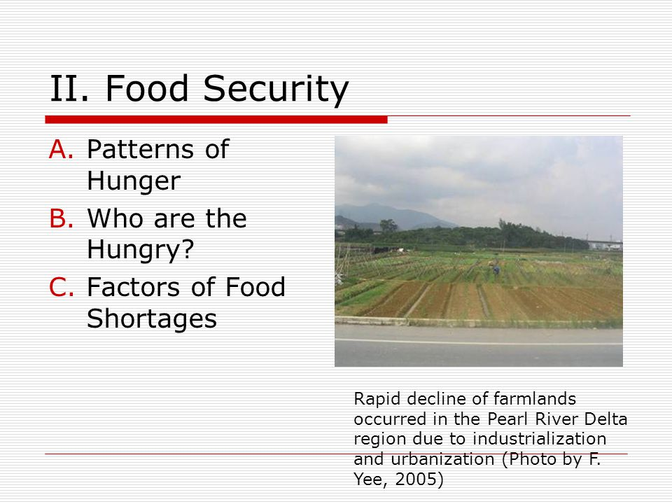 II.Food Security A.Patterns of Hunger B.Who are the Hungry.