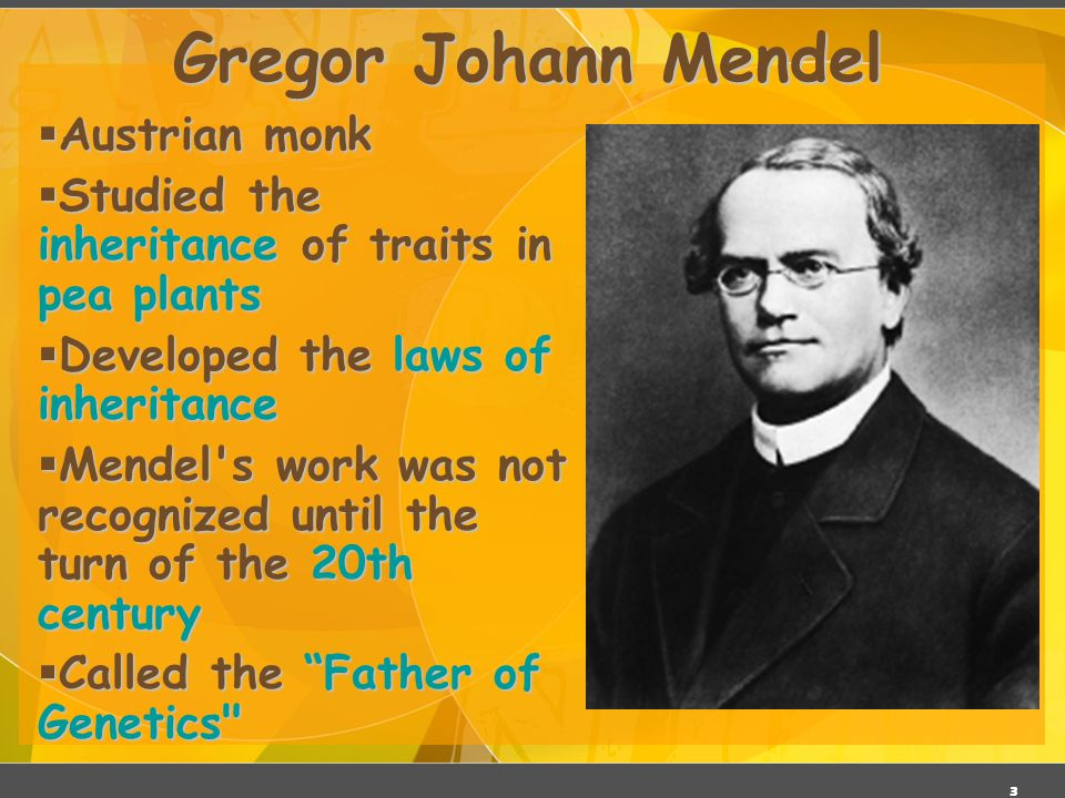 2 Gregor Mendel (1822-1884) Responsible for the Laws governing Inheritance of Traits