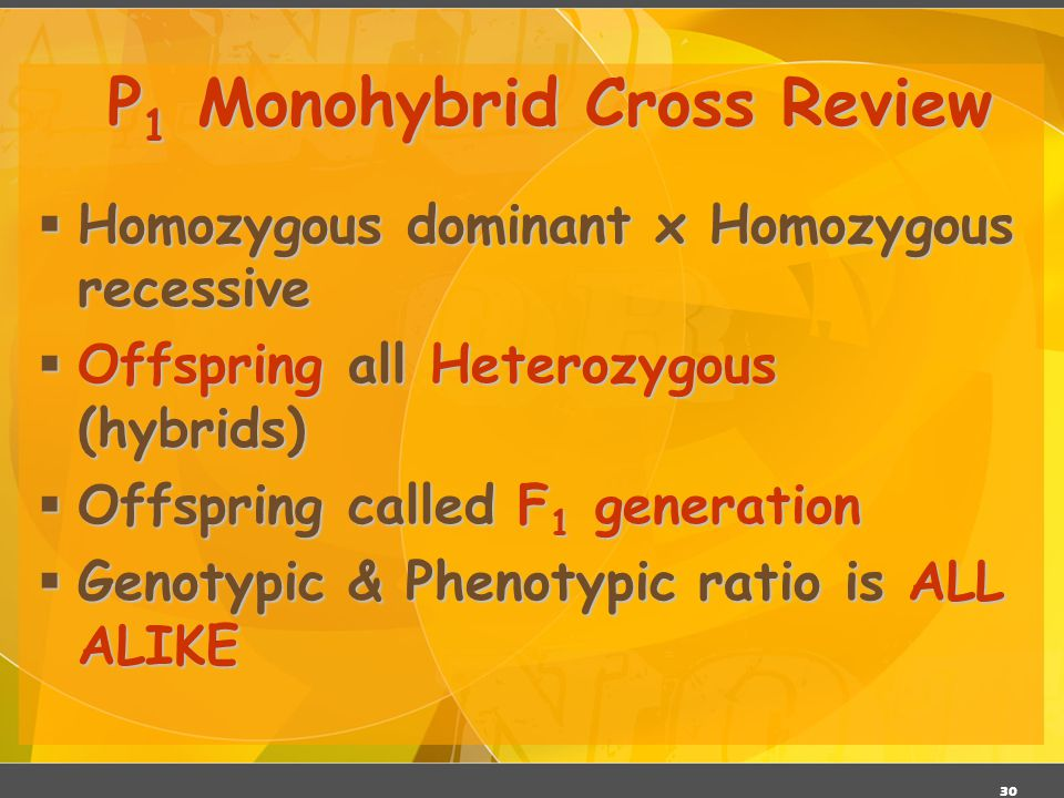 29 Trait: Seed Shape Alleles: R – Roundr – Wrinkled Cross: Round seeds x Wrinkled seeds RR x rr P 1 Monohybrid Cross R R rr Rr Genotype:Rr Genotype: R