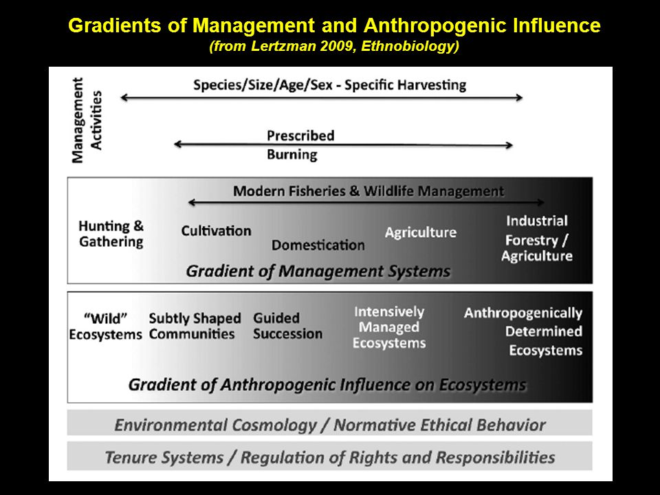 Gradients of Management and Anthropogenic Influence (from Lertzman 2009, Ethnobiology)