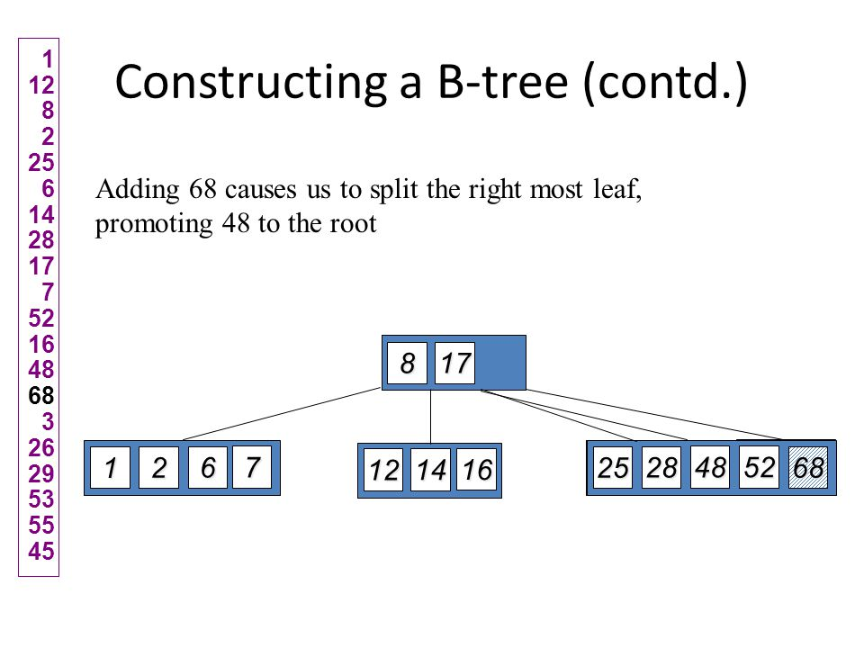 Type #4: Too few keys in node and its siblings 1229 79152269563143 Note when printed: this slide is animated