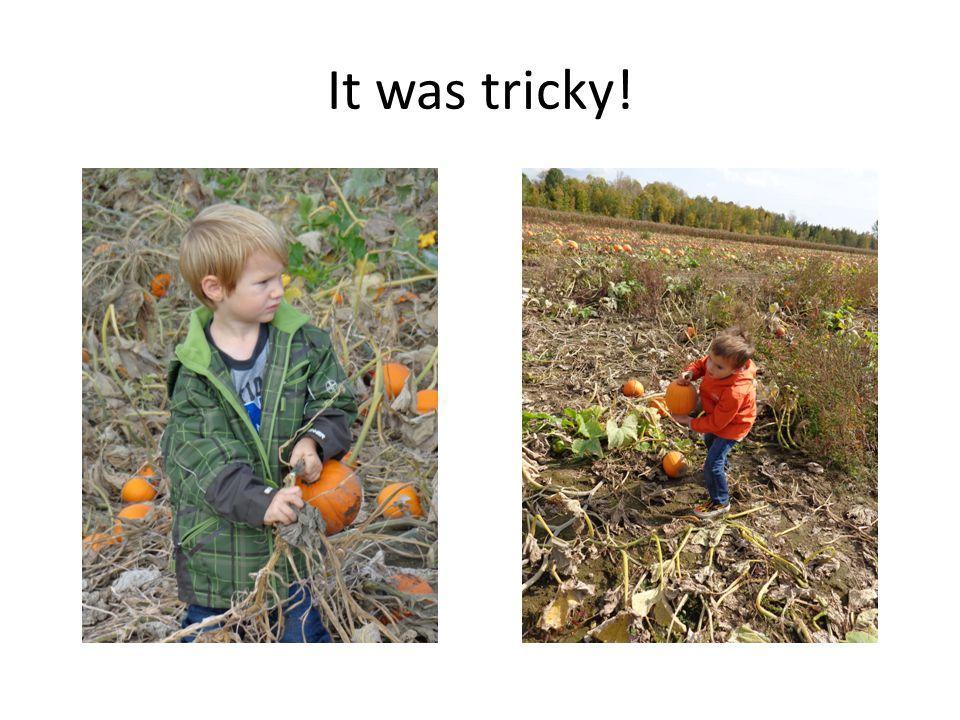 It was tricky!