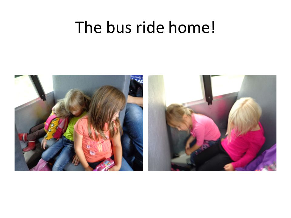 The bus ride home!
