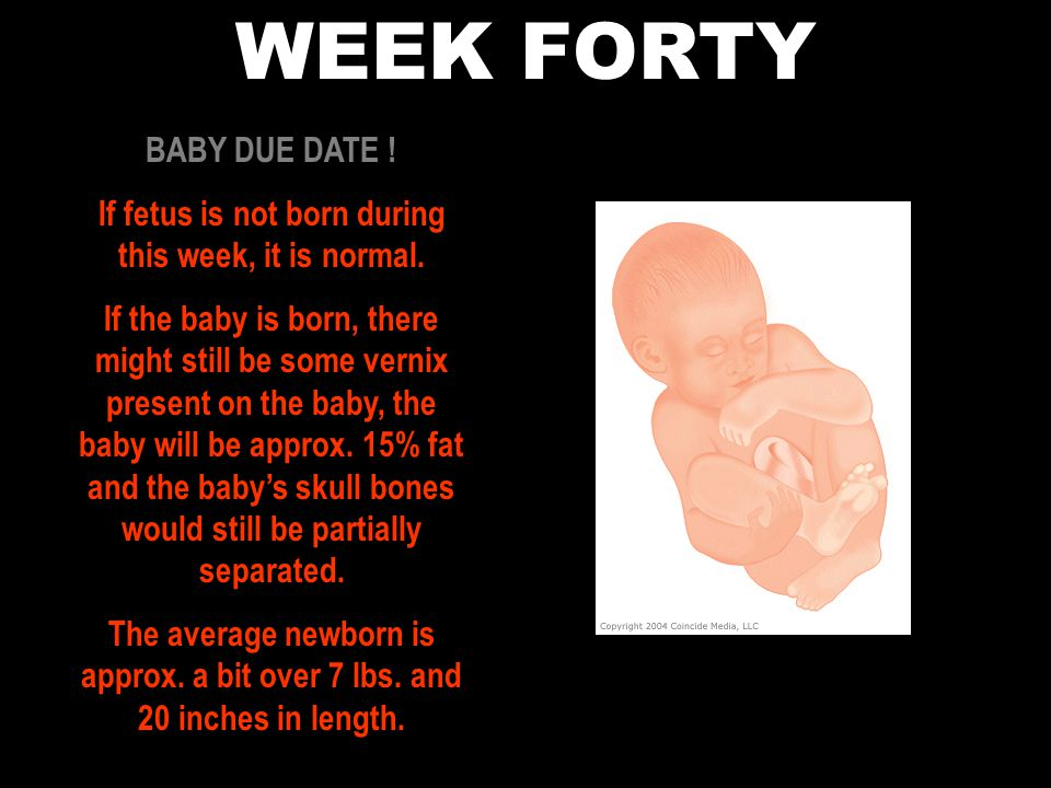 WEEK FORTY BABY DUE DATE .If fetus is not born during this week, it is normal.
