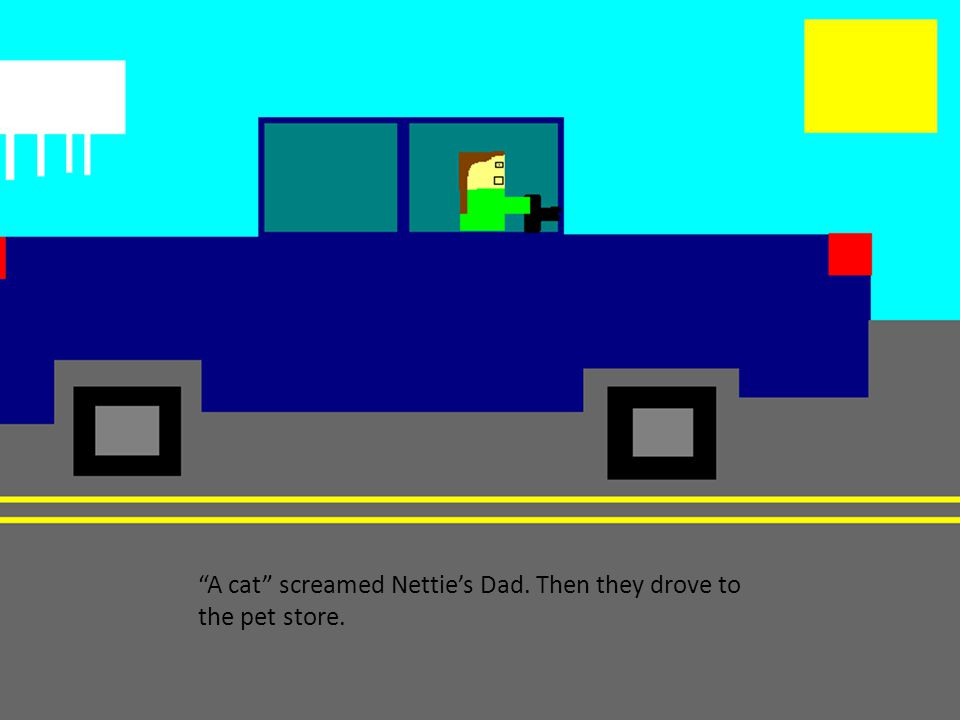 A cat screamed Nettie's Dad. Then they drove to the pet store.
