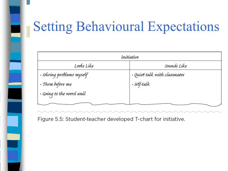 Setting Behavioural Expectations