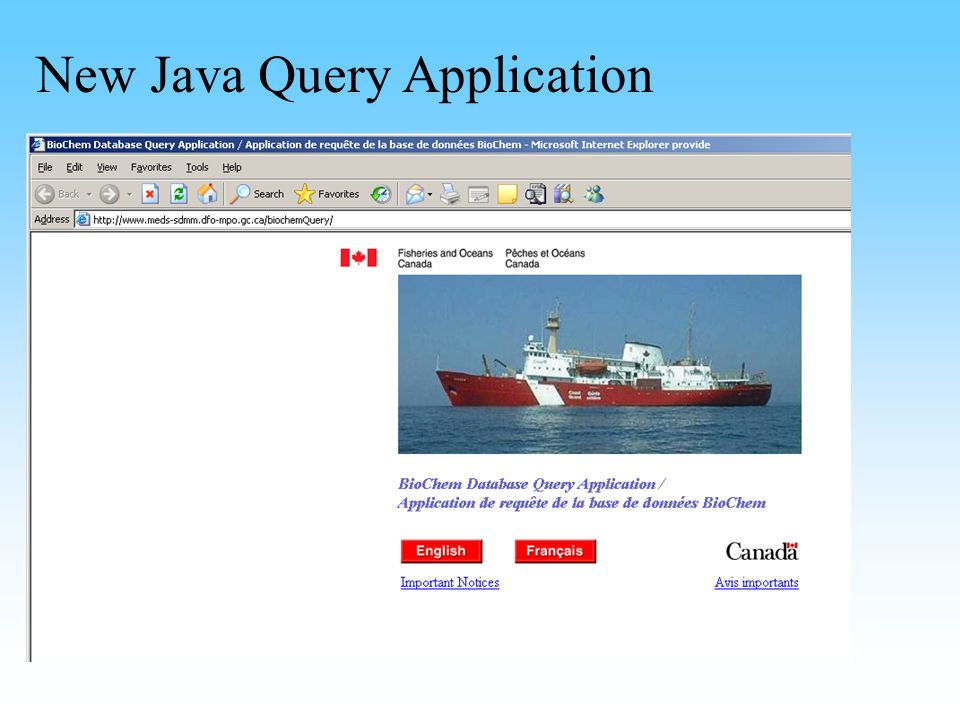 New Java Query Application