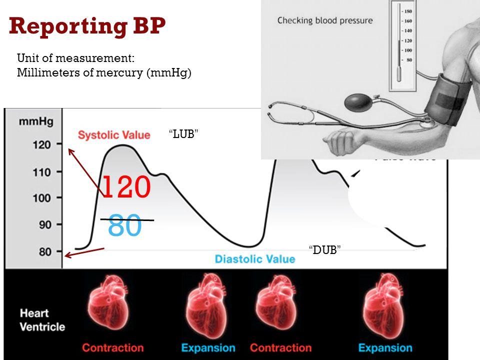 "Reporting BP 4 Unit of measurement: Millimeters of mercury (mmHg) 120 80 ""LUB"" ""DUB"""