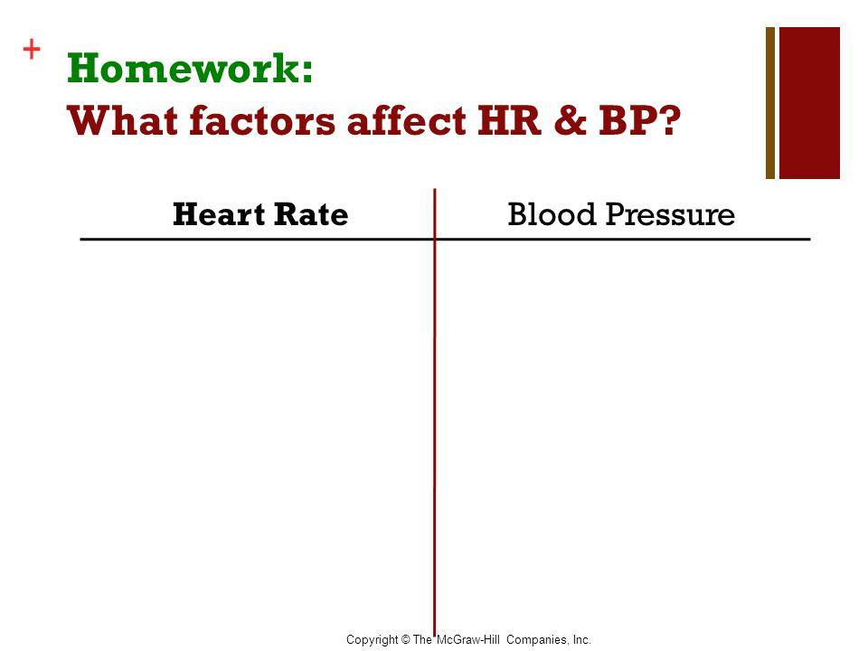 Copyright © The McGraw-Hill Companies, Inc. + Homework: What factors affect HR & BP? Heart RateBlood Pressure