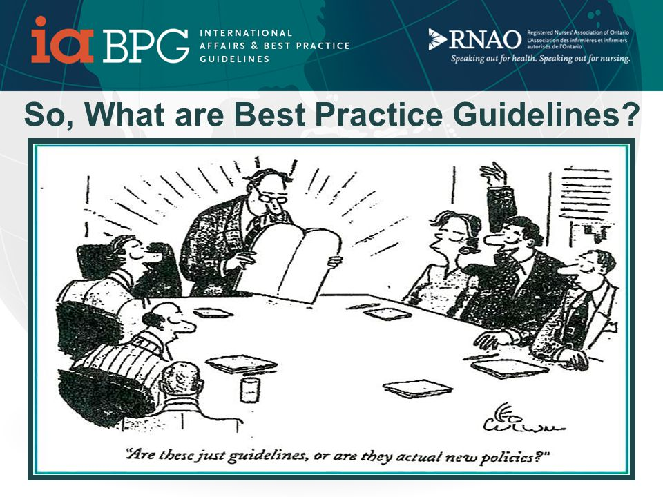 This Section of the Workshop will Answer these questions……… What are the benefits of RNAO Best Practice Guidelines (BPG) Program.