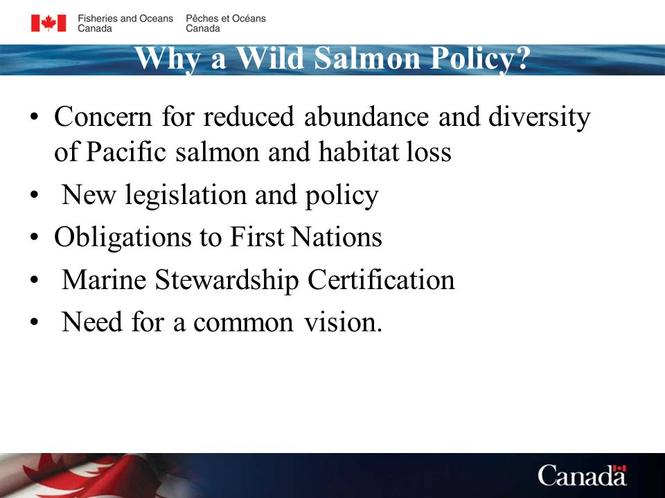 Why a Wild Salmon Policy.