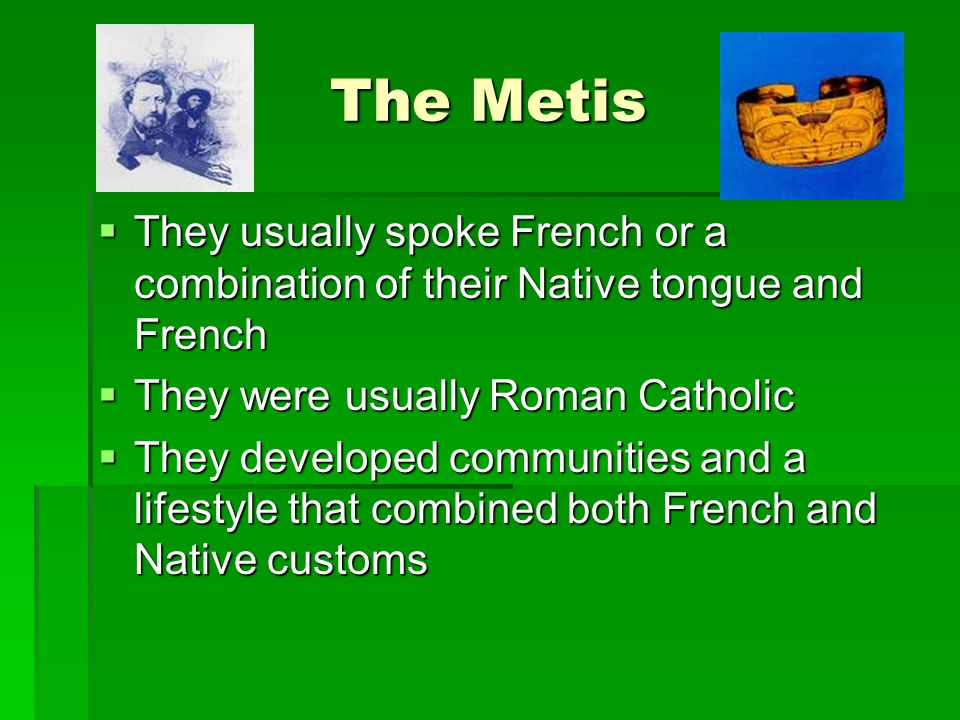 The Metis- The Bison Hunt  The Metis hunted bison seasonally  The hunt took place in the early summer and autumn and had several purposes  fresh meat  Hides  Meat and fat made pemmican