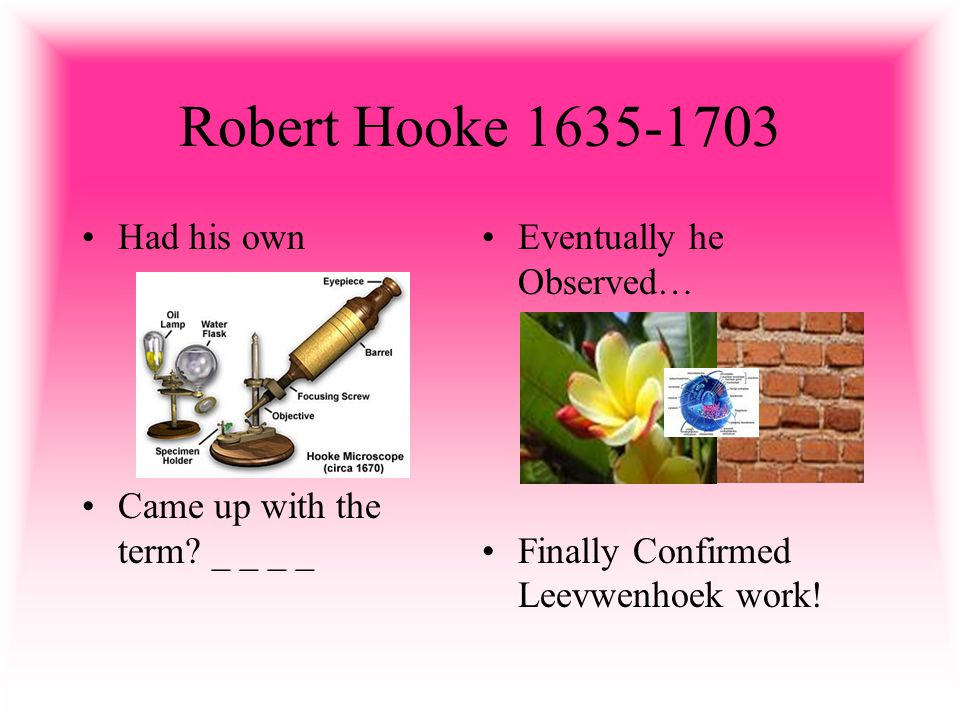 Robert Hooke 1635-1703 Had his own Came up with the term.