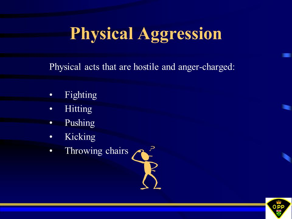 Physical Aggression Physical acts that are hostile and anger-charged: Fighting Hitting Pushing Kicking Throwing chairs
