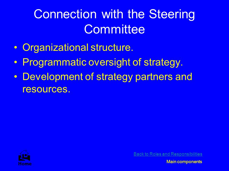 Connection with the Steering Committee Organizational structure. Programmatic oversight of strategy. Development of strategy partners and resources. B