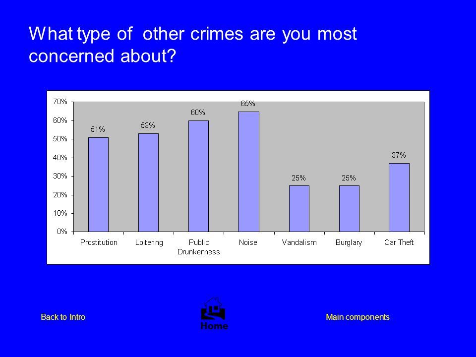 What type of other crimes are you most concerned about?  Home Main componentsBack to Intro