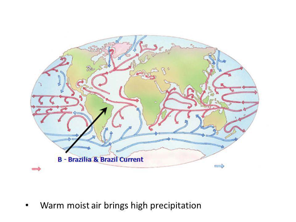 Warm moist air brings high precipitation