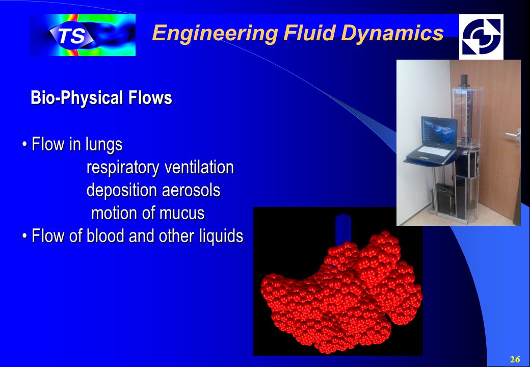 26 Engineering Fluid Dynamics Bio-Physical Flows Flow in lungs Flow in lungs respiratory ventilation respiratory ventilation deposition aerosols deposition aerosols motion of mucus motion of mucus Flow of blood and other liquids Flow of blood and other liquids